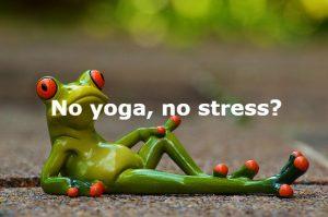 bedrijfsyoga bedrijfs yoga